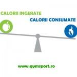 Cate calorii trebuie sa consum zilnic?