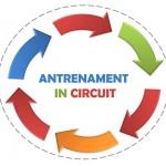 Antrenament in circuit – ZIUA 8